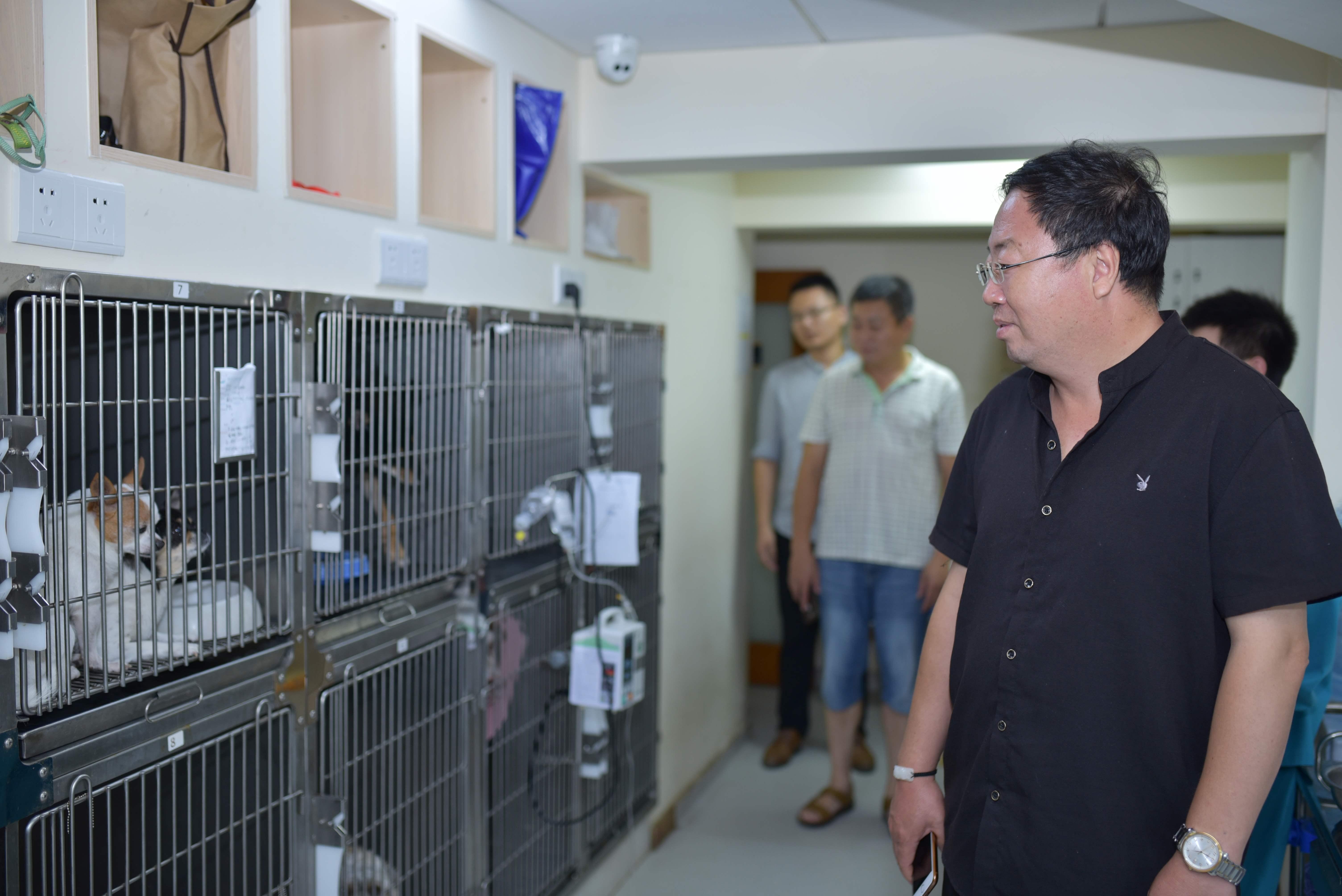 长江大学领导莅临联合动物医院武昌总院参观指导